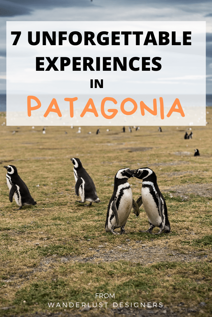 What to do in Patagonia?   Heading to Patagonia? Check out this article on the best things to do in Patagonia to make your trip unforgettable!   #patagonia #traveltips #southamerica