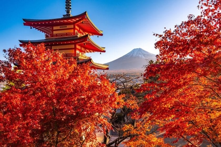 A view of Mt. Fuji from Chureito pagoda with a foreground of fall foliage.